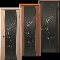 Двери Сириус-2