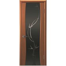 Ульяновские двери Сириус-2 тёмный анегри